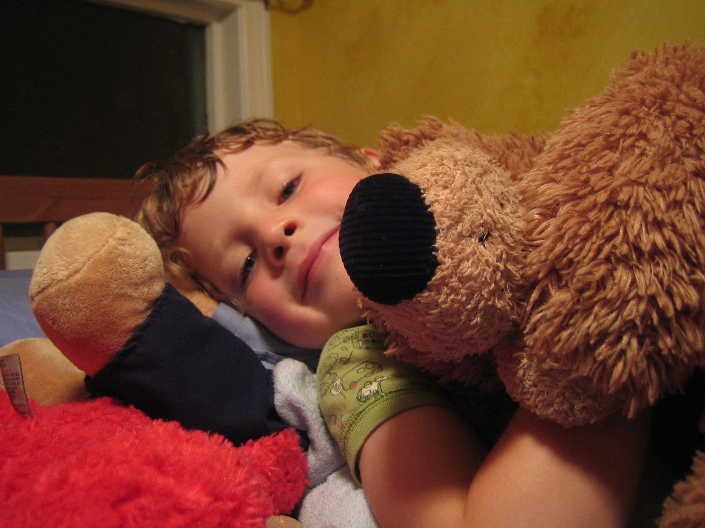 Bedtime with Bear (photo by Yvonne Condes)