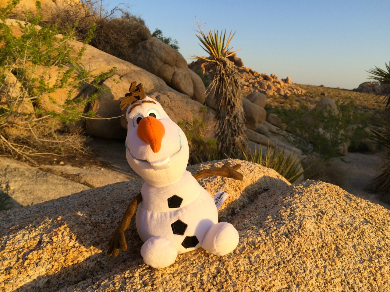 Olaf-#Disneyside-photo-by-yvonne-condes