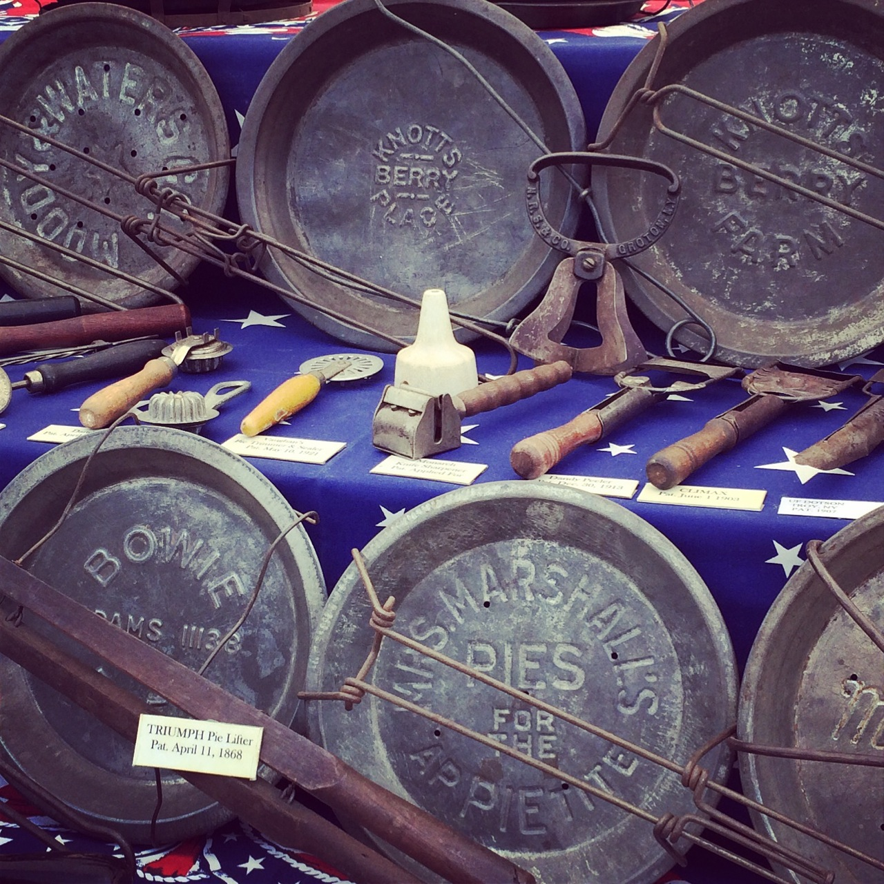 Pie-Pans-photo-by-Yvonne-Condes